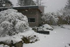 Winter 93 Hunziker (36)