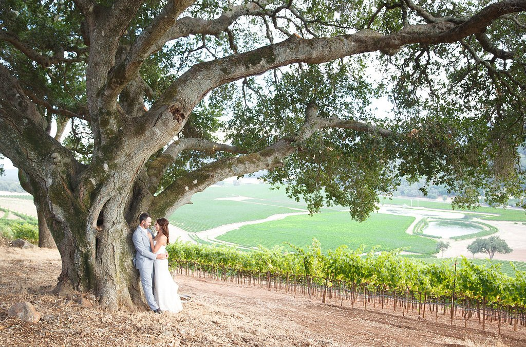 How much does a Wine Country Wedding cost?