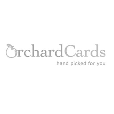 ZMG 185095XAB Charity Christmas Cards