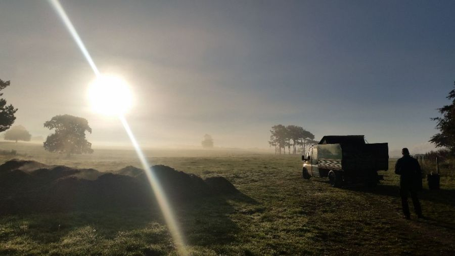 Misty Morning, Beautiful day to be a Tree Surgeon - Arborist, Alfreton, Derbyshire