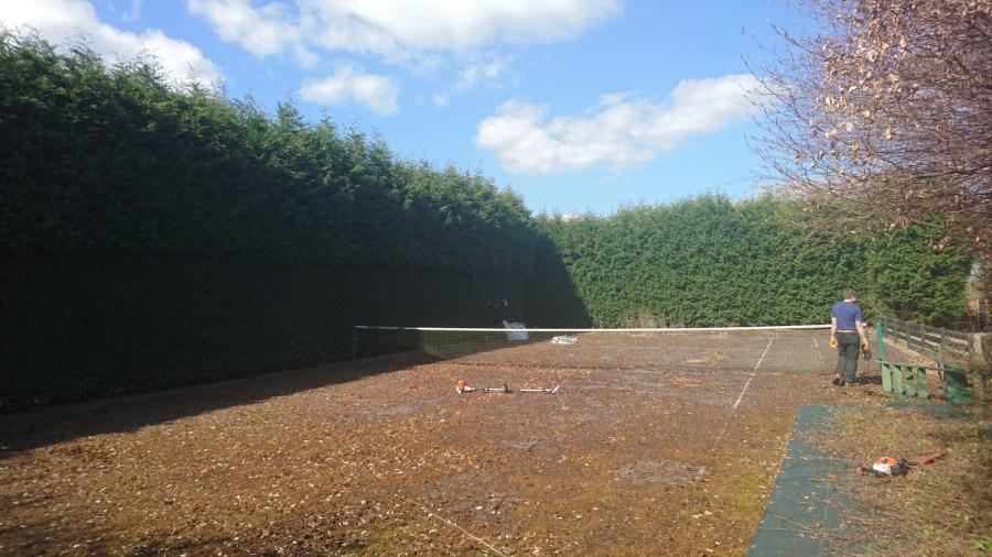 Before Large Leylandii Hedge Reduction in Watnall, Nottingham