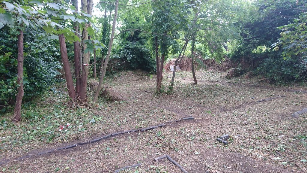 Conservation Area Clearance in The Park, Nottingham, NG7 Back
