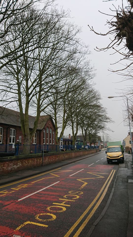 Tree Pruning at a School in Jacksdale, Notthinghamshire