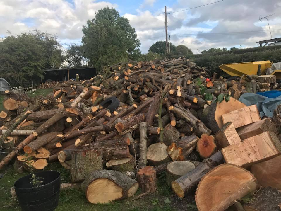 Site Tree Clearance Log Pile
