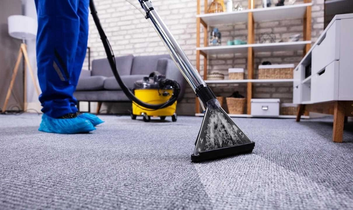 Steam Carpet Cleaning Orchid Cleaning Services