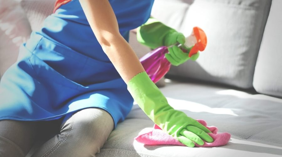 Woman cleaning a sofa. Orchid Cleaning Services