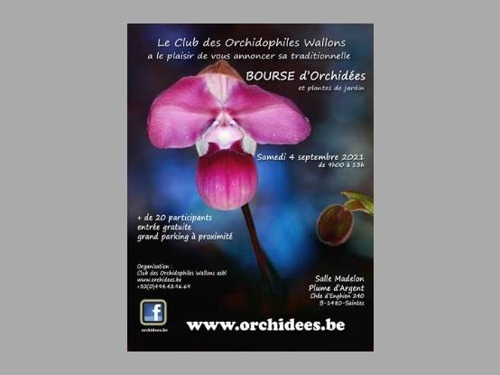 Je bekijkt nu C.O.W. – Orchideeënbeurs