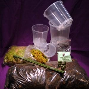 omplanteringssats-medium.jpg