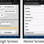 Recording Condition Scores On The FarmWizard App