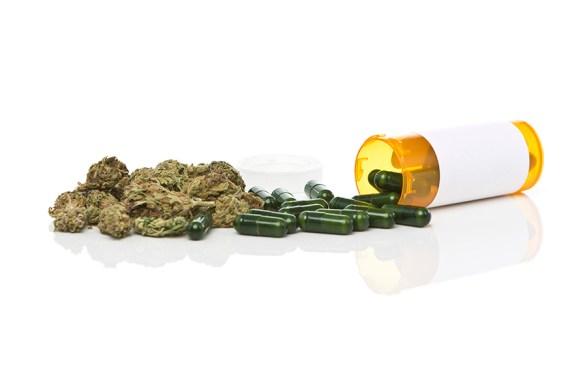 Senate Shuts Down DEA Efforts to Interfere in Marijuana Reforms