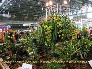 pordenoneorchidea_stand