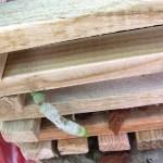 cestino_legno_p_6