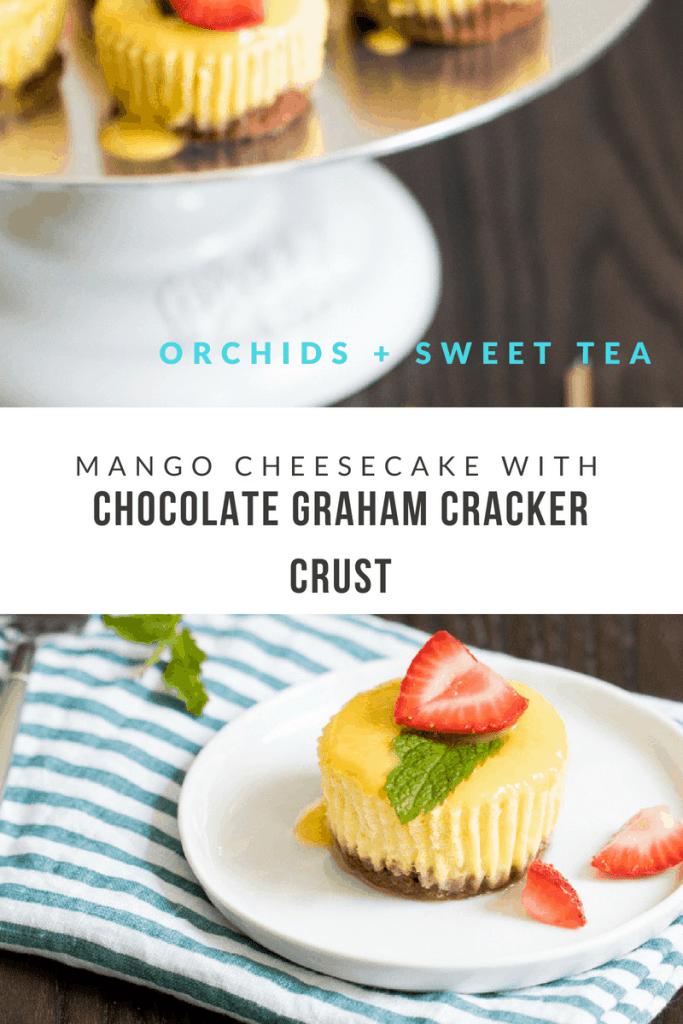 Mango Cheesecake with Chocolate Graham Cracker Crust