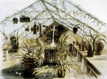 Construction of the Orchid House