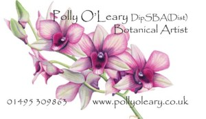 Polly DipSBA card