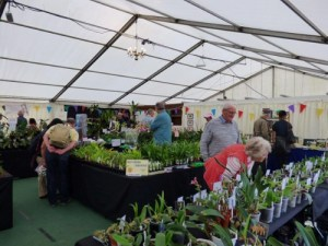 Orchid Nursery displays