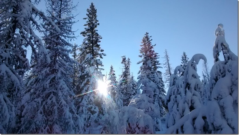 Methow valley affordable cross country skiing sunny day