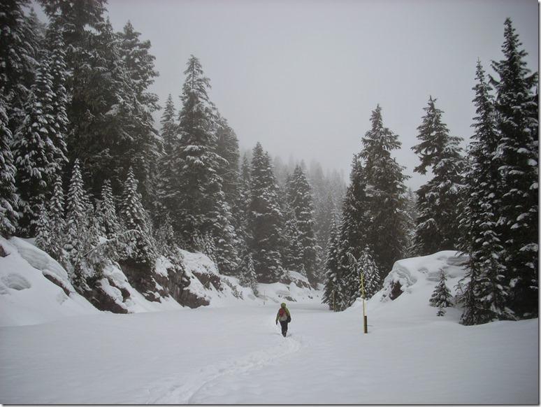 Mowich Lake Mt Rainier in Winter snowshoeing