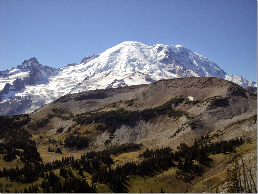 Mt Rainier rises behind a hill on a sunny day in Mt Rainier national park