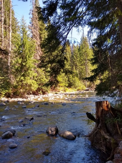Bumping River in American Forks Campground