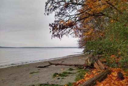 Dash Point State Park Beach Fall