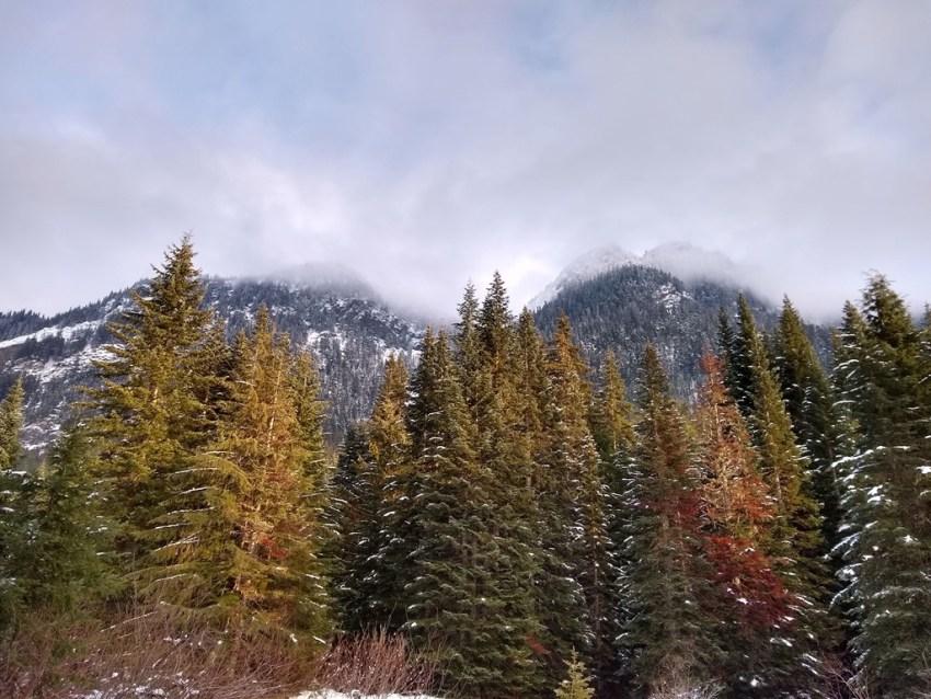 Gold Creek Valley Snowshoe views