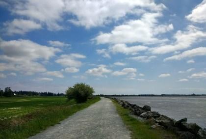 best winter salish sea beach walks padilla bay trail