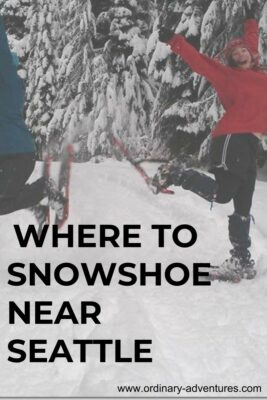 A woman in a red jacket and hat wearing snowshoes jumping in a snowy forest