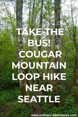 A trail winds between tall, straight alder trees. Text reads: Take the Bus! Cougar Mountain Loop Hike near Seattle