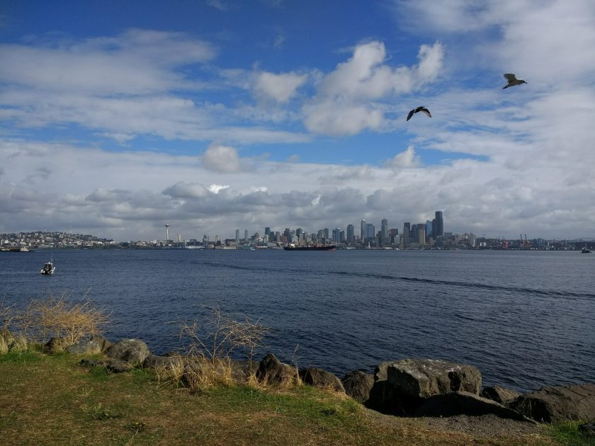 The Seattle skyline is seen from a distance across the water. There is a tanker ship in the harbor as well as a sailboat. There are two birds flying against a blue and cloudy sky. In the foreground on the shore there are rocks and grass