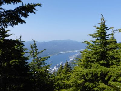 A sunny day in Ketchikan Alaska. The town is seen far below a local mountain, Deer mountain. In the foreground are evergreen trees framing the town with three cruise ships far below. Forested hillsides are in the background