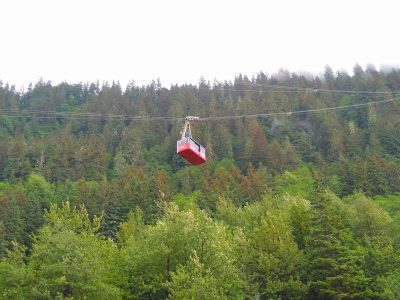 A red tram car hangs from a wire going up the side of a forested mountain on a foggy day