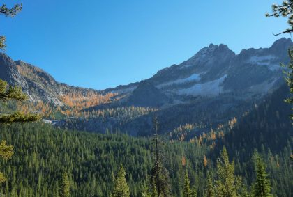 High mountains with a dusting of snow above a valley filled with evergreen trees and golden larch trees in the fall. It's a blue sky sunny day.