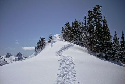 Beginner snowshoeing near Seattle is good at Mt Rainier! This close to the parking lot trail, Alta Vista, has new snow surrounding distant mountains and nearby trees, with a winding snowshoe path to a point.