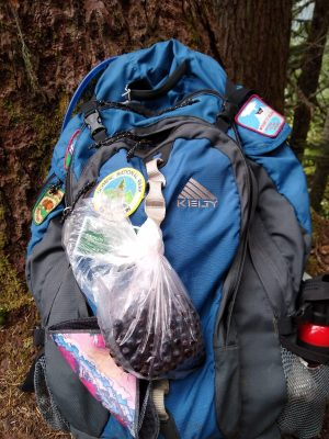 A blue backpack sitting on the ground. It has a number of patches on it and a bag of huckleberries are tied to the outside, along with a kula cloth!