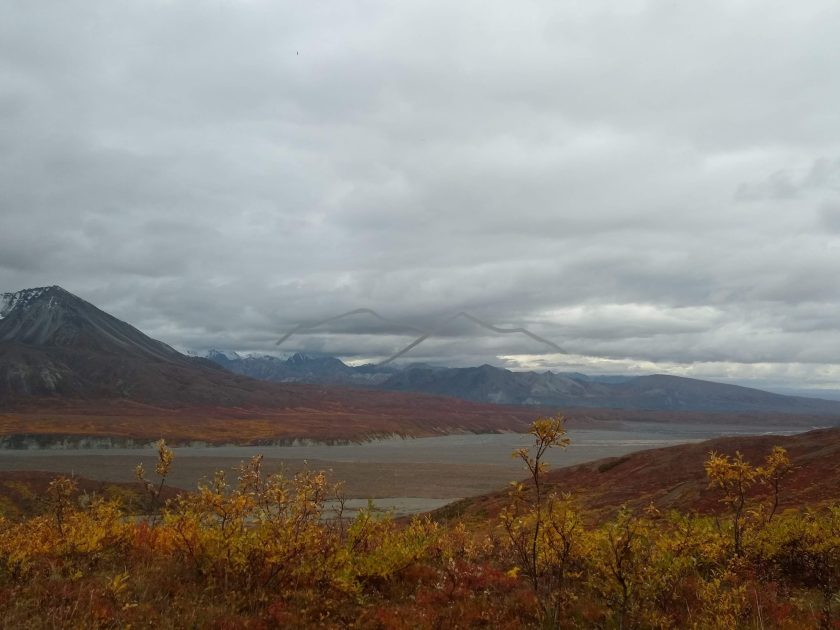 The outline of Denali at Eielson visitor center on an overcast day. A river and fall colored bushes are in the foreground