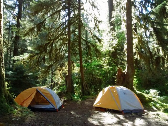 The Sol Duc Hot Springs campground is forested and walking distance from the hot springs and the Sol Duc Falls trail