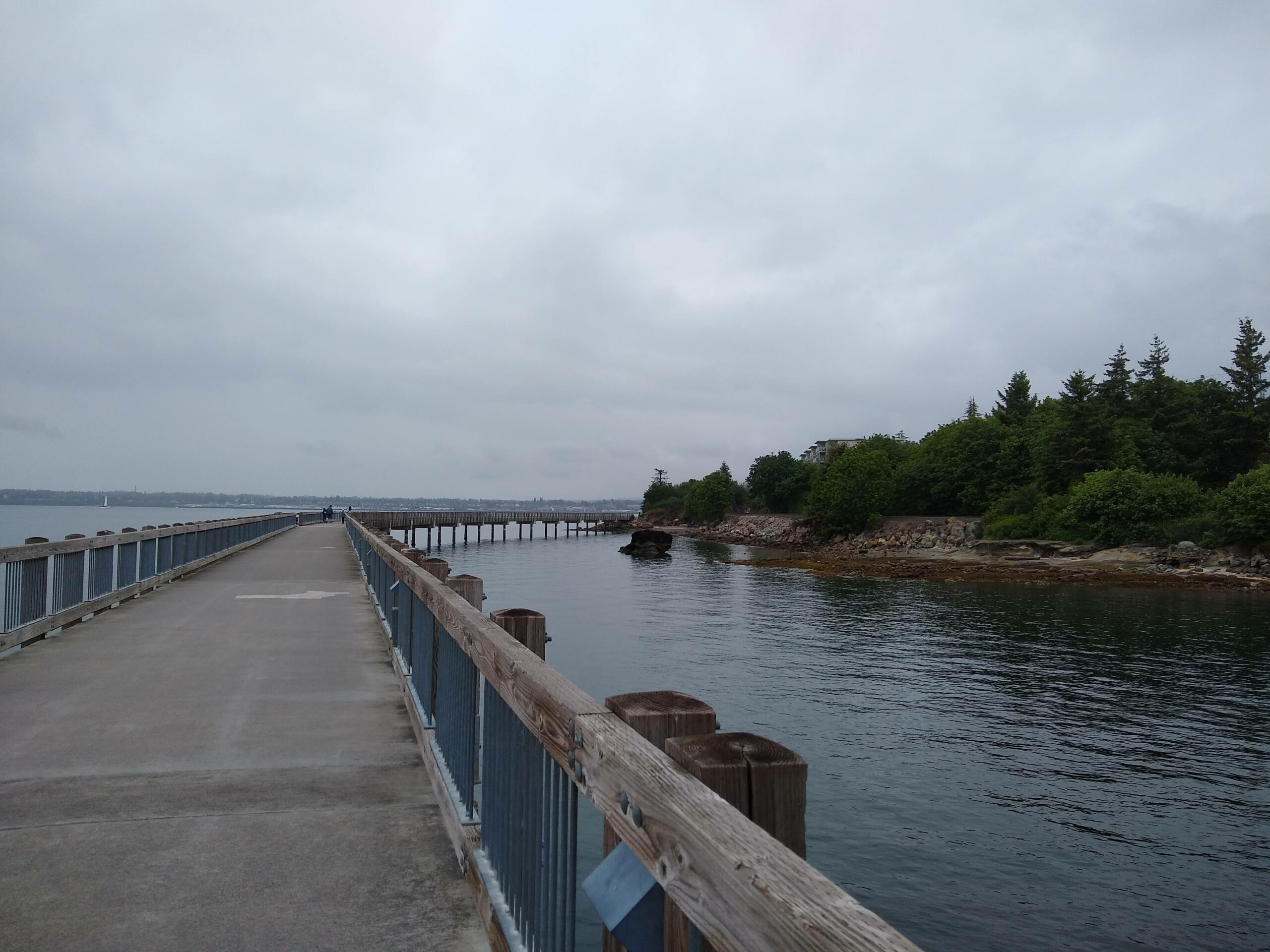 A boardwalk over the water next to a  forested shoreline on an overcast day