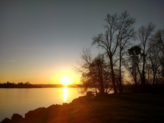 Sunrise over a body of water with rocks and trees silouetted against it in Seattle