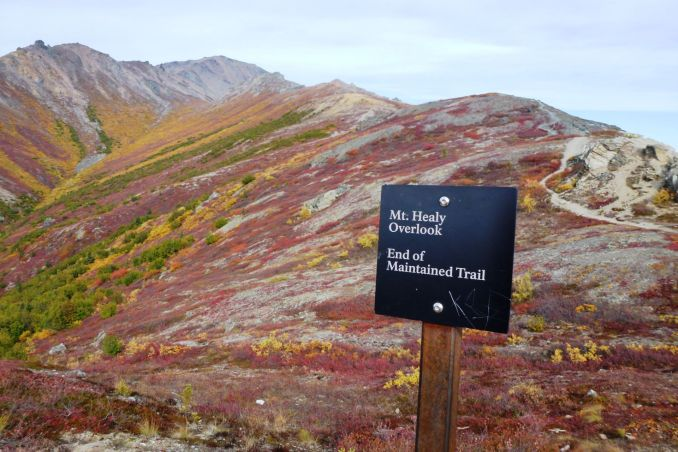 A sign marking the end of a trail on Mt Healy in Denali National Park. Hiking is a wonderful activity in Denali.