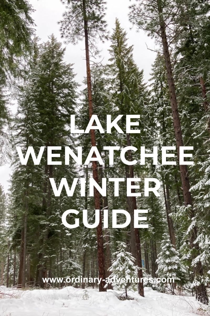 A snowy forest on an overcast day. Text reads: lake wenatchee winter guide