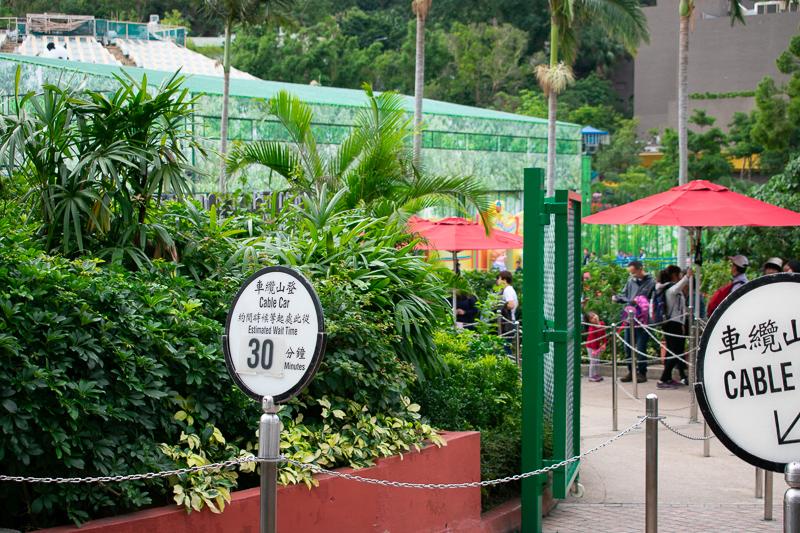 ocean park hk main attractions