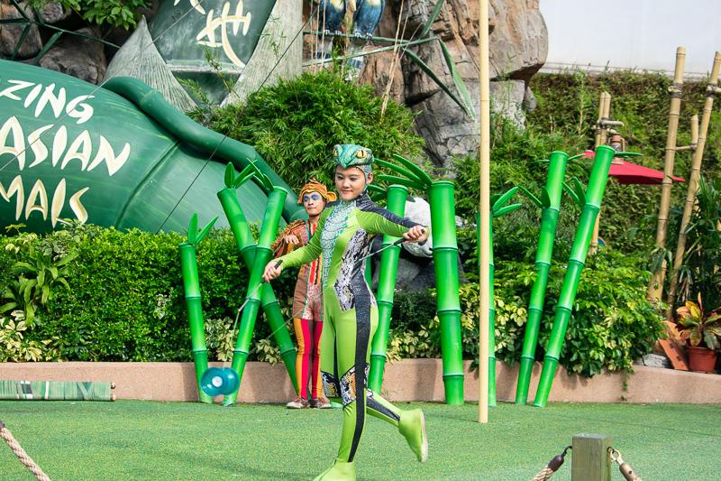 ocean park attractions - performances