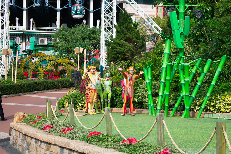 ocean park performances