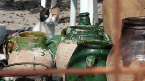 Roadside pottery shop (with cat purveyor) on the way to Alibey Island