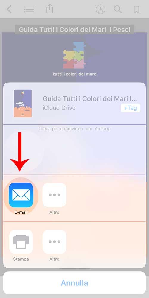 ibooks-condividere-pdf-opzioni-stampa