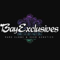 BAY EXCLUSIVE