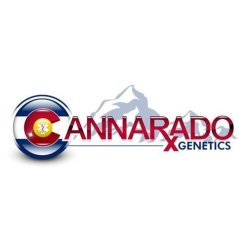 CANNARADO GENETICS