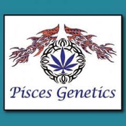 PISCES GENETICS