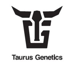 TAURUS GENETICS